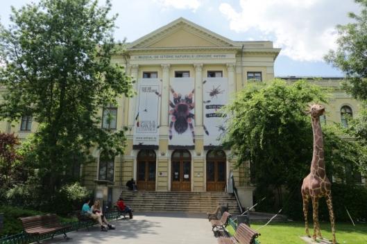 muzeul-national-de-istorie-naturala-grigore-antipa-1682